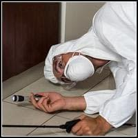 Termite & Pest Control