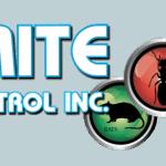 Termite Bob